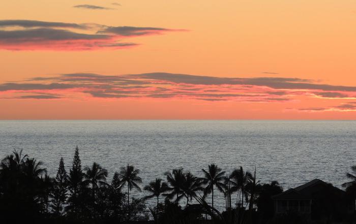 Hawaii-truly-living-lisa-rose